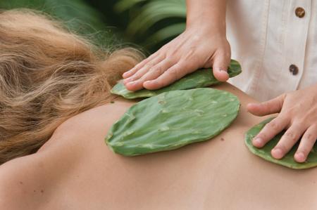 cactus-massage