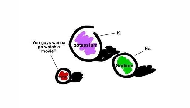 nerd-jokes-2